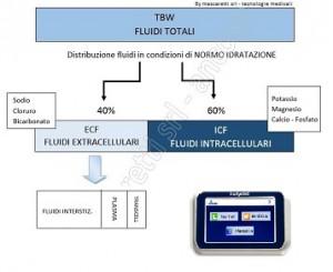 BS_1_FLUIDI